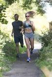 Сценарная трасса jog для 3 бегунов Стоковая Фотография RF