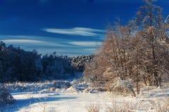 Сценарное изображение дерева спрусов Морозный день, спокойная зимняя сцена лыжа курорта Исследуйте красоту земли Деревенский дом  стоковое фото rf