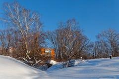 Сценарное изображение дерева спрусов Морозный день, спокойная зимняя сцена лыжа курорта Исследуйте красоту земли Деревенский дом  стоковые изображения rf