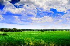 сценарное ландшафта сельское Стоковое Изображение
