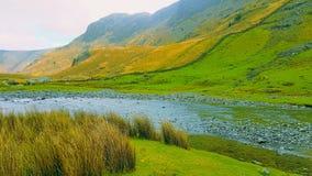 Сценарное река сельской местности Стоковые Фотографии RF