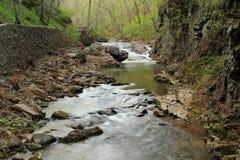 Сценарное Cedar Creek стоковая фотография
