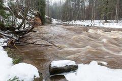 Сценарной река покрашенное зимой в стране Стоковое Изображение