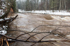 Сценарной река покрашенное зимой в стране Стоковое Изображение RF