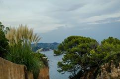 Сценарные взгляды Cala de Sant Francesc, береговой линии залива Бланеса, Косты Brava, Испании, Каталонии стоковая фотография rf