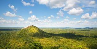 Сценарные зеленой горы долины и чая, Цейлон стоковые фотографии rf
