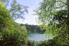 Сценарные озеро и полесья на голубом бассейне, Дорсет, Англия стоковые изображения rf