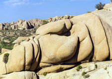 Сценарные утесы в национальном парке дерева Иешуа Стоковые Фотографии RF