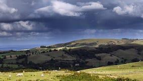 Сценарные холмы нагорья в Шропшире, Великобритании видеоматериал