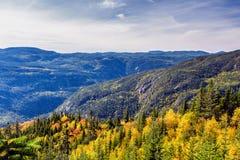 Сценарный ландшафт в осени na górze горы с красочным деревом Стоковое фото RF