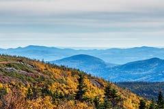 Сценарный ландшафт в осени na górze горы с красочным деревом Стоковое Изображение RF