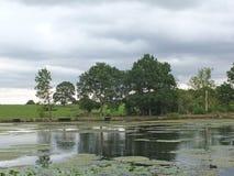 Сценарный взгляд берега спокойного озера с серым облачным небом и деревьями и травы покрыл холмы вдоль банка отраженного в стоковые изображения
