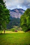 Сценарный взгляд в Flums, Швейцарии Стоковые Фото