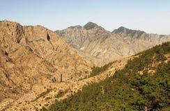 Сценарный взгляд горы Suyukou провинция национального Forest Park Helan, Нинся, Китай стоковые фото