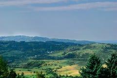 Сценарный взгляд зеленых холмов предусматриванных в траве и вегетации Стоковые Фото