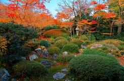 Сценарный взгляд каменного фонарика под пламенистыми деревьями клена в красивом саде Genkoan стоковое фото