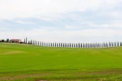 Сценарный взгляд ландшафта Тосканы с зелеными холмами и кипарисами, Италией стоковое изображение