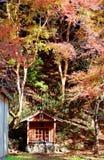 Сценарный взгляд малой буддийской святыни под деревьями клена стоковые фотографии rf