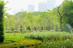 Сценарный взгляд парка в центре большого города стоковая фотография rf