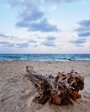 Сценарный взгляд пляжа против голубого неба стоковое фото rf