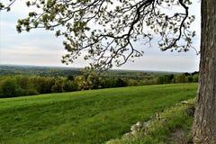 Сценарный взгляд убежища Oxbow национального Wildlfe принятого от Гарварда, Массачусетса, Соединенных Штатов Стоковое Фото