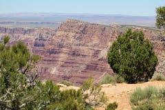 Сценарный взгляд гранд-каньона стоковые изображения