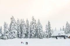 Сценарный взгляд малых людей вокруг лыжного курорта когда снежный день Стоковая Фотография