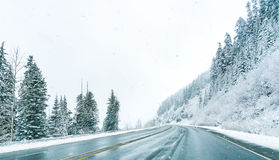 Сценарный взгляд малых людей идя в гору снега, Вашингтон, Стоковые Фотографии RF