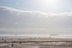 Сценарный взгляд на береге Lake Baikal в зиме во время шторма снега Стоковые Фотографии RF