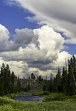 Сценарный взгляд на национальном парке Йеллоустона Стоковые Фото