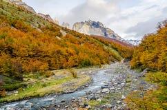 Сценарный взгляд на треке Torres del Paine Стоковое фото RF