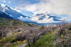 Сценарный взгляд на треке Torres del Paine Стоковые Фотографии RF