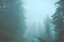 Сценарный взгляд дороги в лесе при покрытый снег Стоковые Фотографии RF