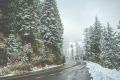 Сценарный взгляд дороги в лесе при покрытый снег Стоковое Изображение RF