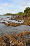 Сценарный взгляд пляжа с утесами на Anyer Стоковые Фотографии RF