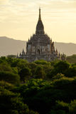 Сценарный взгляд старого виска во время золотого часа, Мьянмы Bagan Стоковые Фото