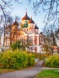 Сценарный взгляд старого городка в Таллине, Эстонии Стоковая Фотография