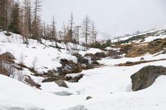 Сценарный взгляд художественной открытки известного места, горы Grossglockner с облаком & тумана, Австрии Стоковое Изображение