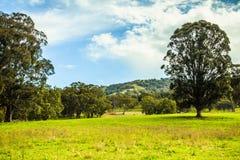 Сценарный взгляд, NSW, Австралия Стоковое Изображение RF