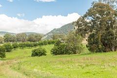 Сценарный взгляд, NSW, Австралия Стоковые Фото