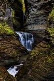 Сценарный водопад в осени - Minnehaha падает - парк штата Watkins Глена - Watkins Глен, Нью-Йорк стоковые изображения rf