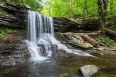 Сценарный водопад в парке штата Ricketts Глена в Poconos в p Стоковые Изображения RF