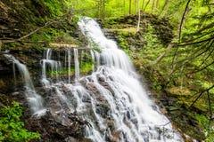 Сценарный водопад в парке штата Ricketts Глена в Poconos в p Стоковое Изображение