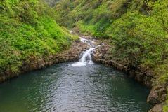 Сценарный водопад около Ганы Мауи Стоковые Изображения