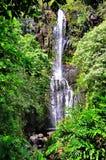 сценарный водопад Стоковые Фото