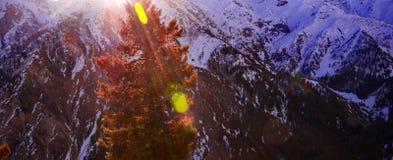 Сценарный высокогорный ландшафт с и горные цепи естественная предпосылка горы Стоковое фото RF