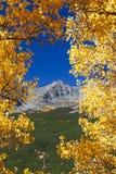 Сценарный горный вид через осины стоковая фотография