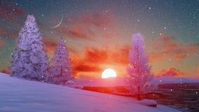 Сценарный заход солнца над снежными елями 4K зимы