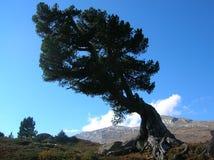 Сценарный кантон Grisons, Швейцарии Стоковые Изображения RF