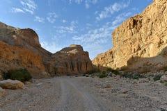 Ландшафт горы пустыни стоковая фотография